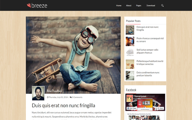 Breeze Professional Responsive Blogger Template
